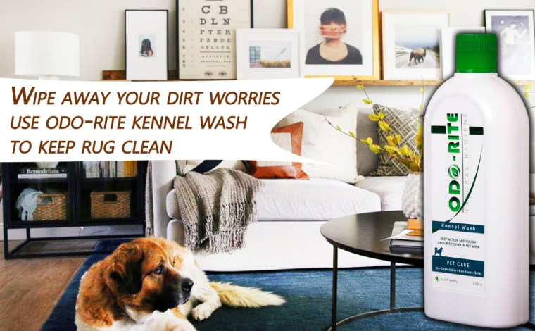 Keep the rug clean