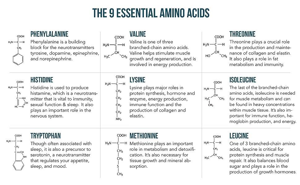 amino acids, essential amino acids, BCAA, EAA, BCAAs, branch chained amino acids