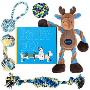 dog toy set