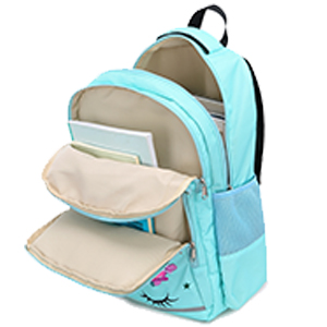 multiple compartments plenty of pockets laptop comparment notebook binders files pockets