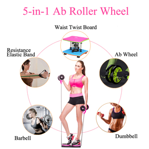 ab roller for abs