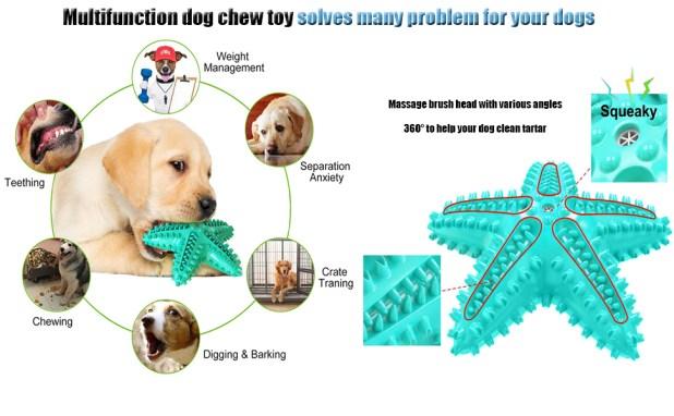 water dog toothbursh chew toy