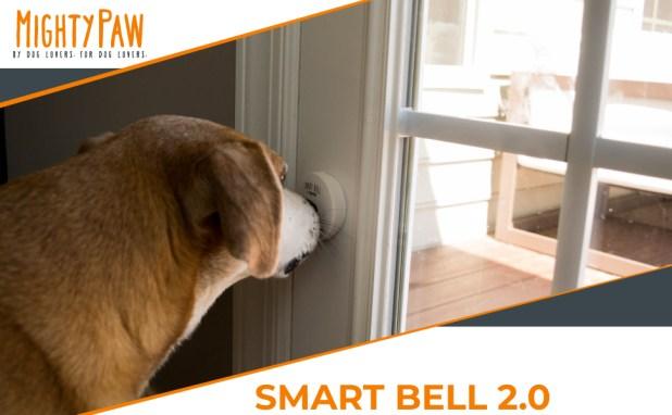 dog doorbell smart bell potty training