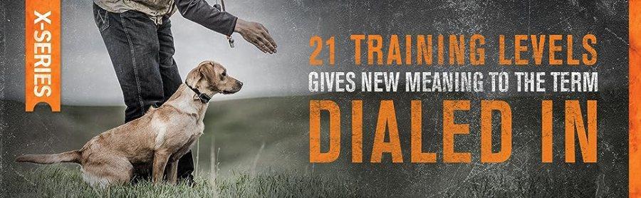 SportDOG, choque, trem, parada, caça, cachorro, colarinho, controle remoto, obediência, colarinho eletrônico, vibração, tom, seguro, caminhada