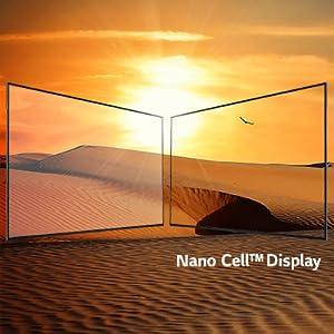 Nano Cell Display