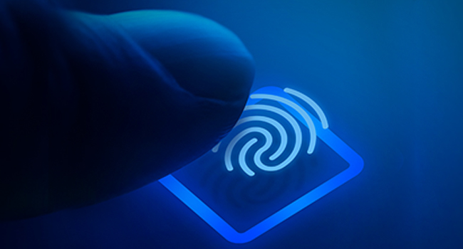 Fingerprint security