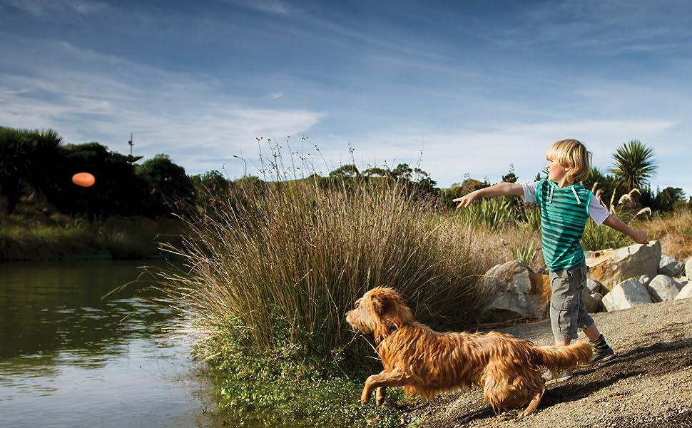 kurgo dog fetch toy, beach toys for dogs, floating toys for dogs, for pool beach