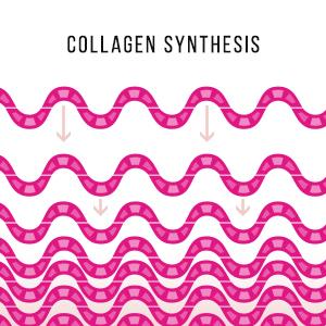 collagen;types;supplements;hair;skin;and;nails;vitamins;best;benefits;it;works
