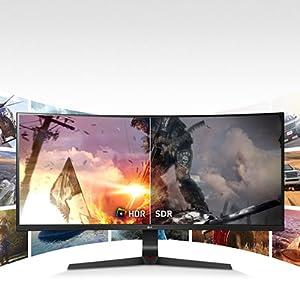 LG HDR Monitor