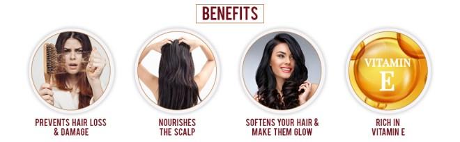 Hair Oil ; Hair Oils; Dabur Almond Hair Oil; Bajaj Rogan ; almond hair oil ; argan hair oil