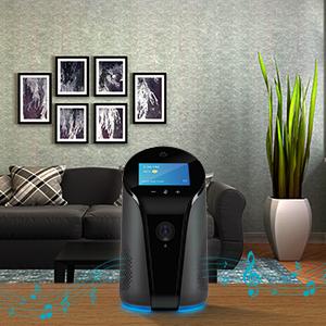 Alexa Built-in, Bluetooth speaker, Smart Hub, Home Automation