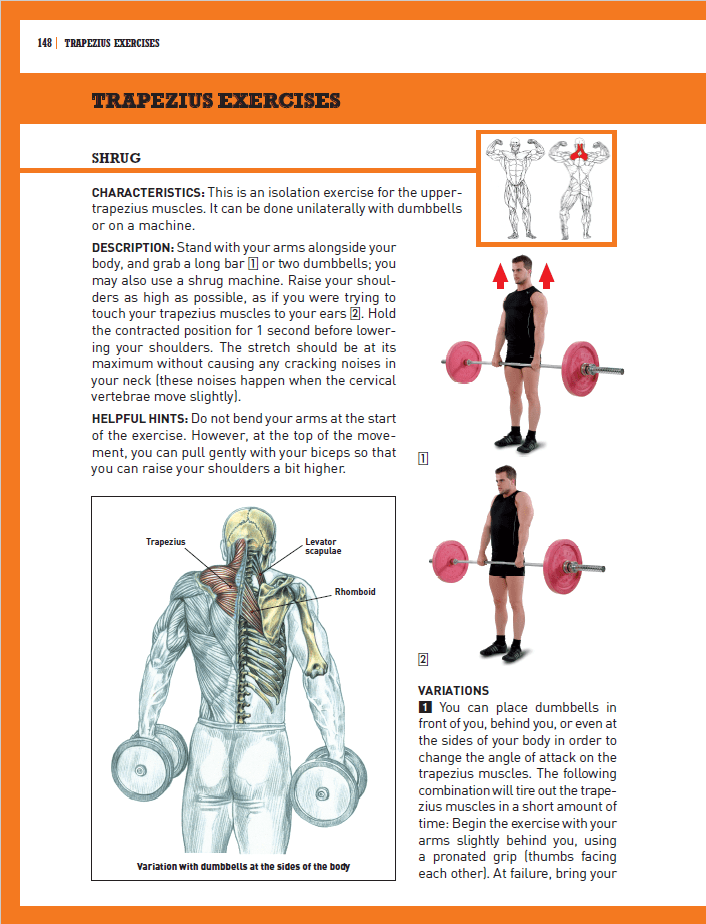 Strength Training Anatomy Workout 2 Pdf | Yourviewsite.co