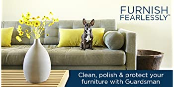furniture cleaner, polish, protection