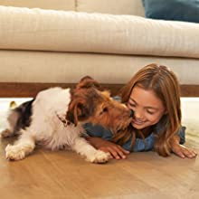 girl playing with a pet dog on the floor