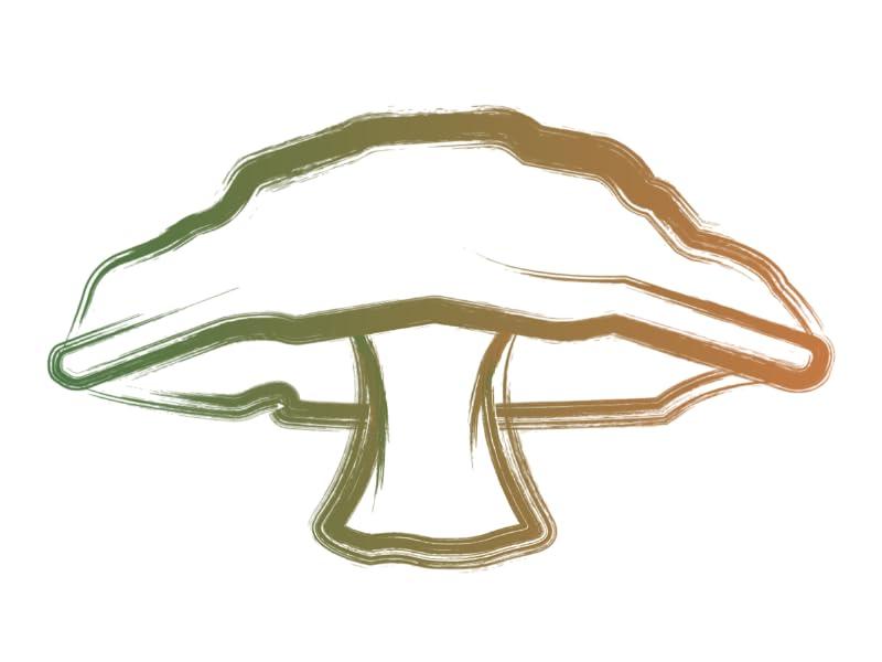Illustration of a Mushroom