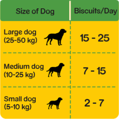 Size of dogs