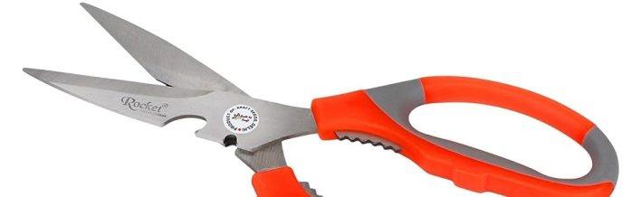 kraft seeds scissors