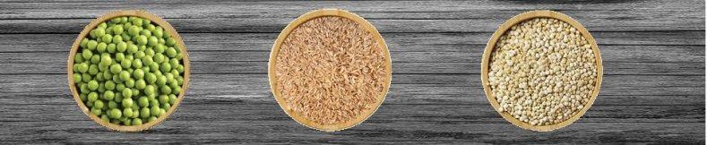 Organic Pea Protein Isolate + Organic Brown Rice Protein + Organic Quinoa