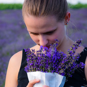 woman lavender, nebulizing diffuser, lavender essential oil, diffuser, essential oil diffuser