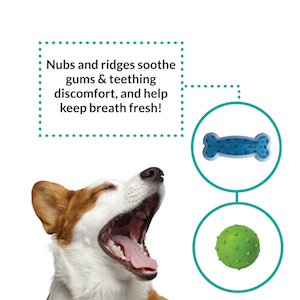 rocket and rex chew toys soothe puppy teeth and gums and freshen their breath.