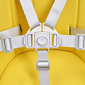 5 - Point Harness