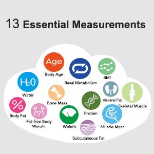 13 essential metrics