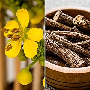 senna-leaf-cascara-sagrada-natural-laxatives-pure-herbal-cleanse-detoxifier-constipation-relief