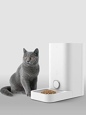 petkit cat auto feeder