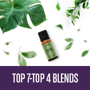 diffuser essential oils aromatherapy peppermint oil lavender essential oil oil diffuser massage oil