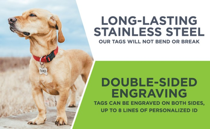 GoTags double sided stainless steel engraved pet ID tags