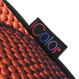 iColor logo