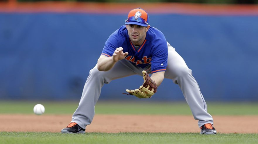 Image result for david wright