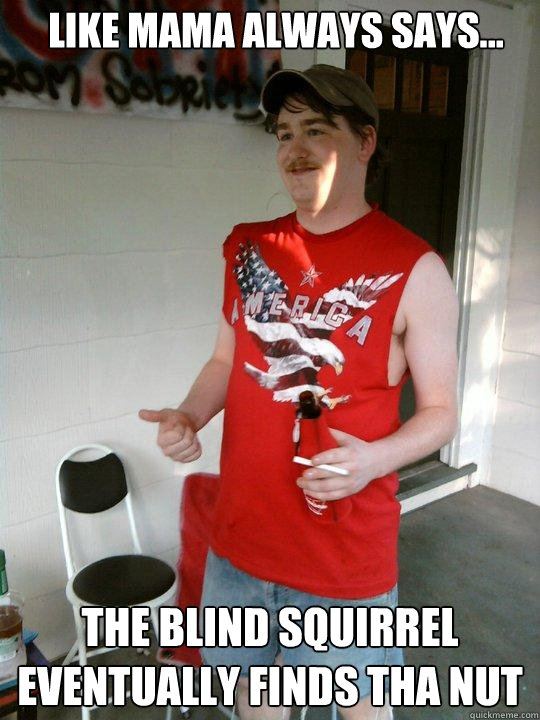 Blind Squirrel Finds A Nut Gif : blind, squirrel, finds, Always, Says..., Blind, Squirrel, Eventually, Finds, Redneck, Randal, Quickmeme