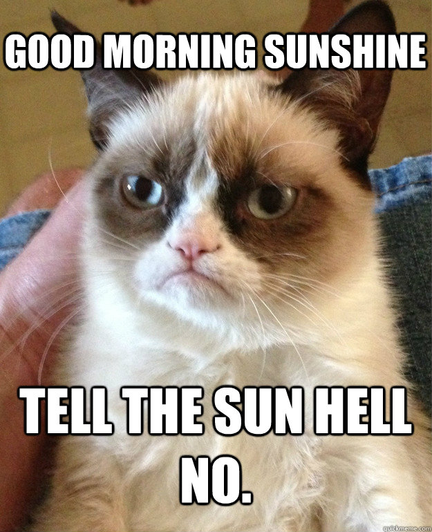 Good Morning Sunshine Funny : morning, sunshine, funny, Morning, Sunshine, Grumpy, Quickmeme