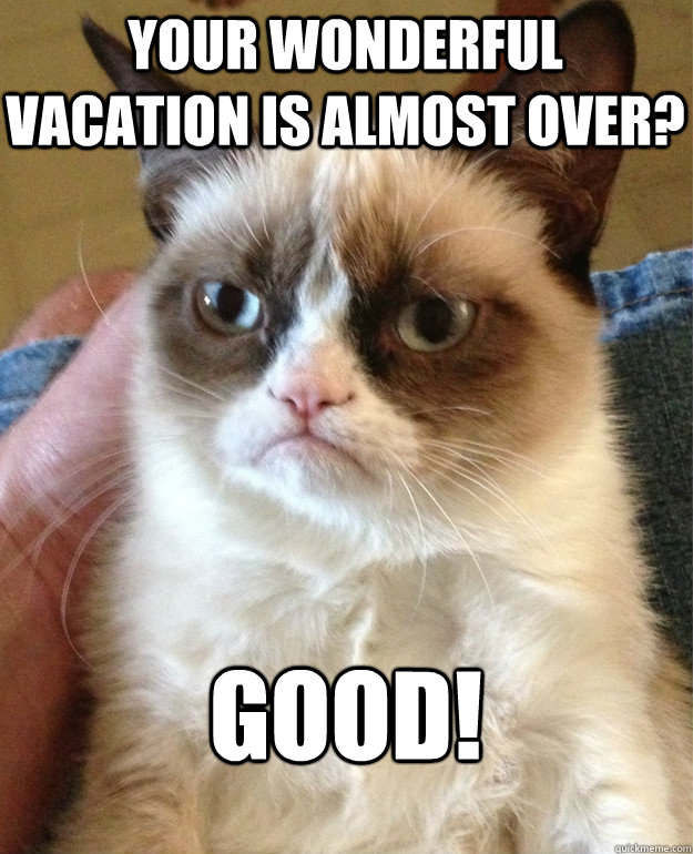Your Wonderful Vacation Is Almost Over Good Grumpy Cat Quickmeme