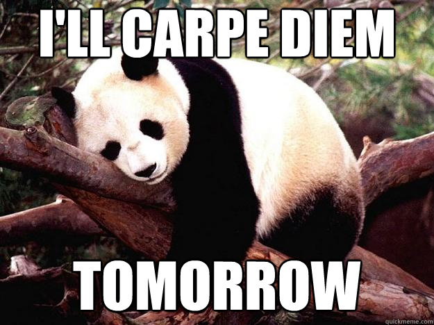 Image result for carpe diem meme