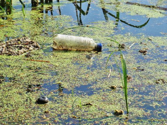 Od skrb vzbujajoče onesnaženosti tal, seveda, ni prav daleč niti do onesnaženih voda
