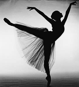 swan lake ballet studio