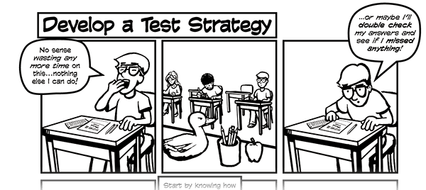 Pearson Test Taking Strategies Comic on Behance