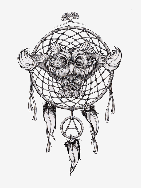 Owl Dreamcatcher Drawing