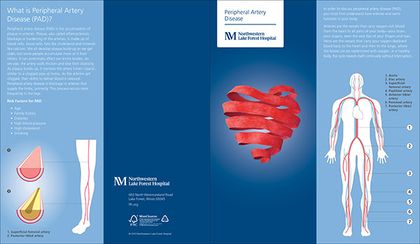 Cardiovascular Brochure Series On Wacom Gallery