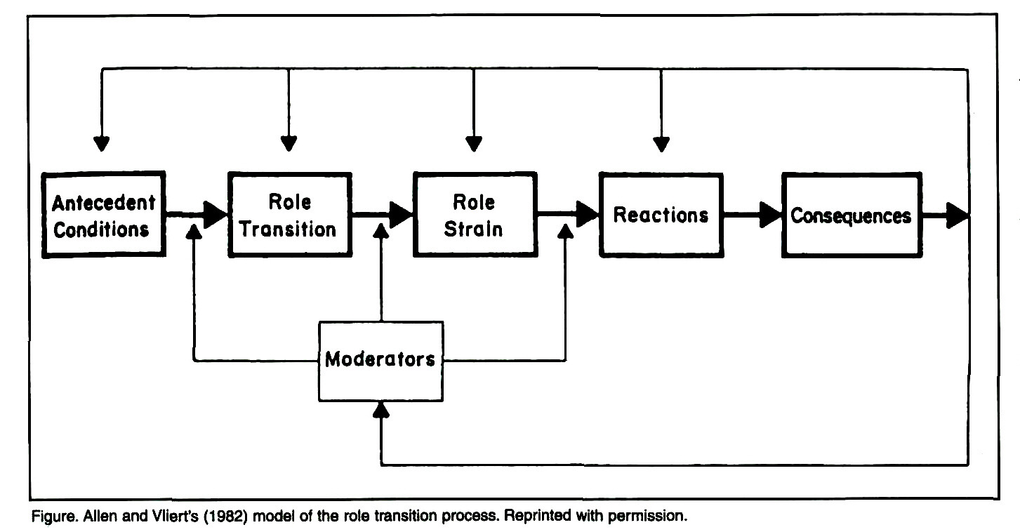 Using Role Theory Concepts to Understand Transitions From