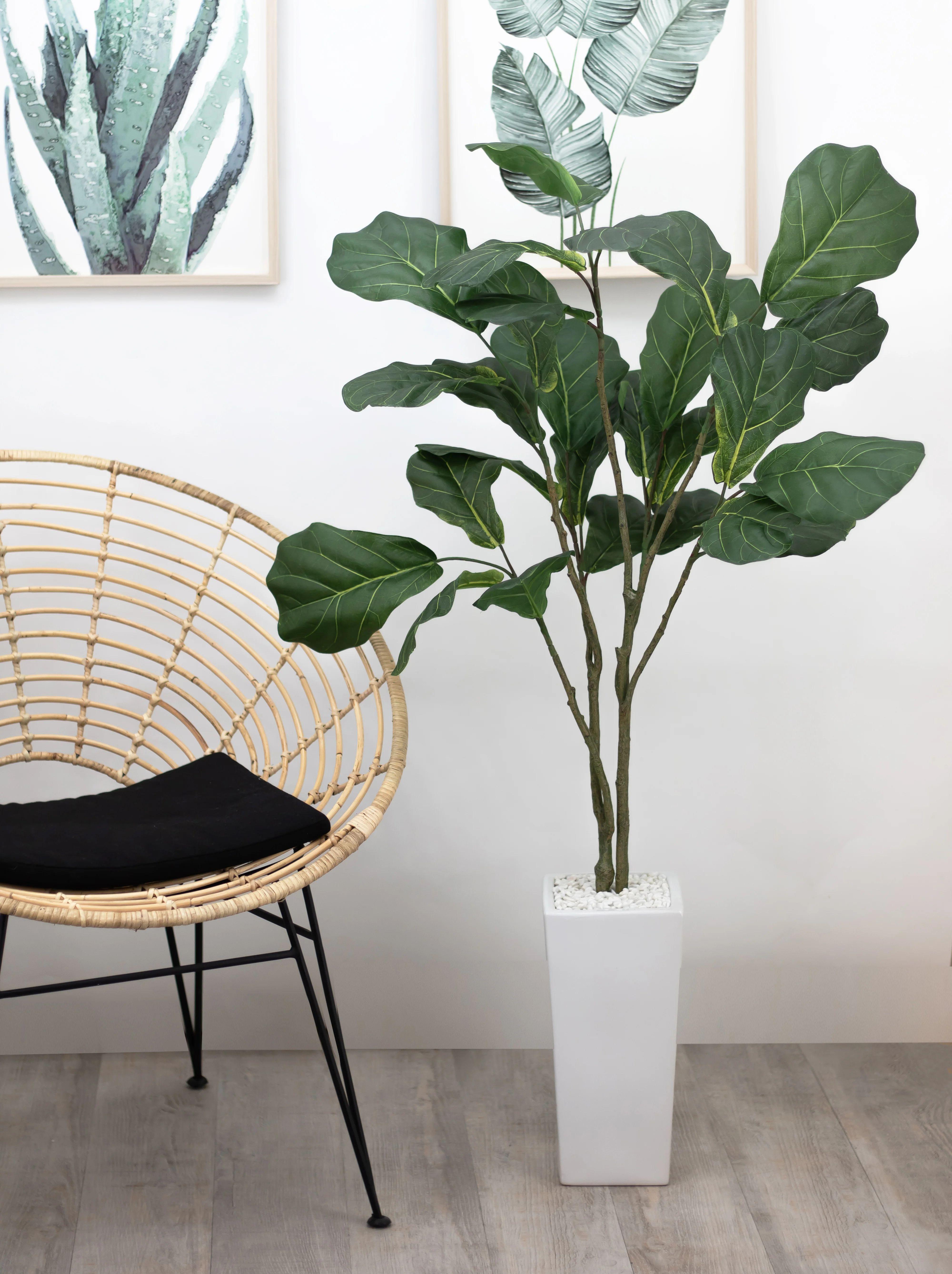 Ficus Lyrata En Pot Ceramique Blanc Plante Artificielle Ligne Deco Ht 125cm Leroy Merlin