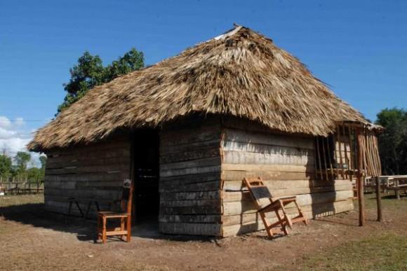 Resultado de imagen de vivienda de indigenas hecha con buriti