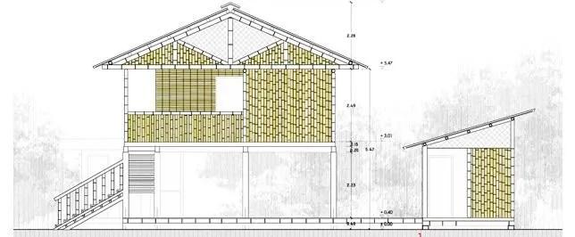 El bambú para viviendas populares de Ecuador