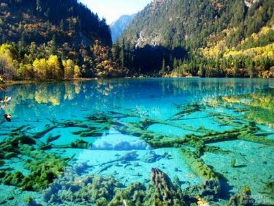 Lago cristalino Turquoise, Jiuzhaigou National Park, China