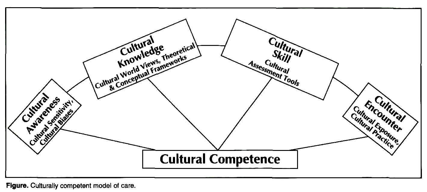 Nursing journal articles cultural diversity