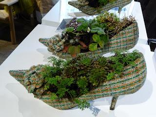 Mini giardini urbani  nelle scarpe  Paperblog