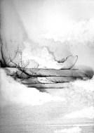 """Solitude"" Beth Nicholas : http://www.beth-nicholas.com/"