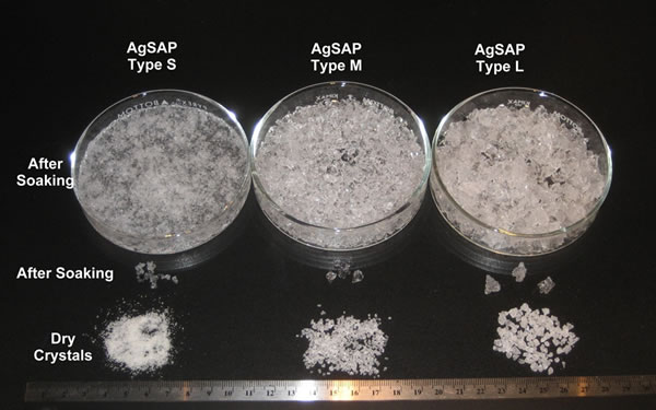 AgSAP Crystals in three sizes before and after soaking